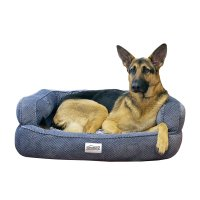Top 5 Best Memory Foam Dog Beds Reviews - Best top care ...