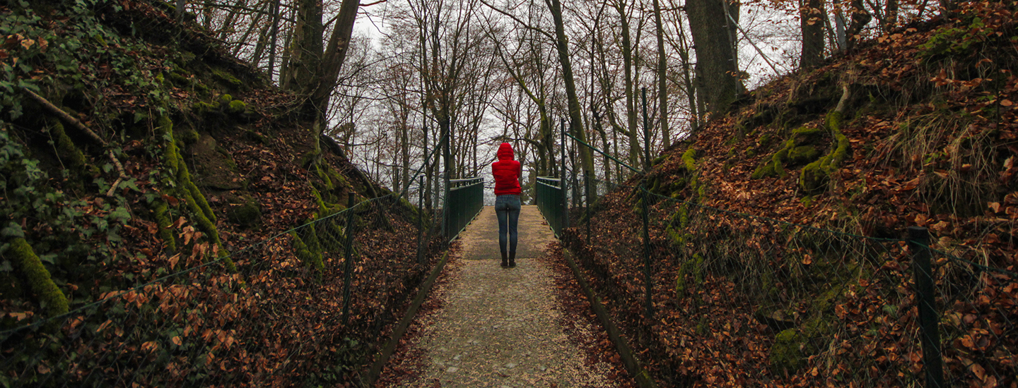 Linz Forest | How Far From Home
