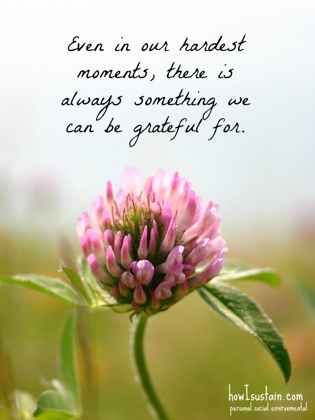 even in our hardest moments, there is always something to be grateful for