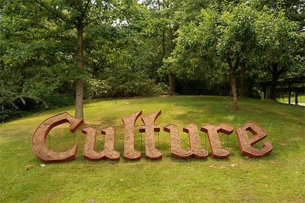 14_culture-seeded-72-400