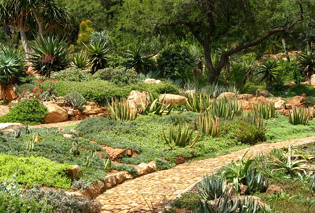 Walter-Sisulu-National-Botanical-Garden