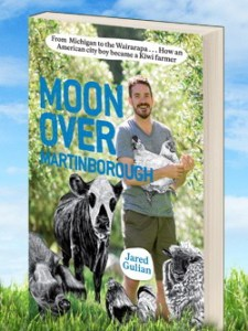 book_moonovermartinborough