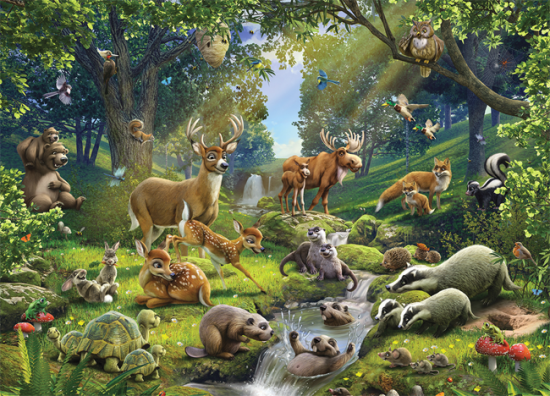 Jungle Behang Kinderkamer Interesting Facts About Forest Animals