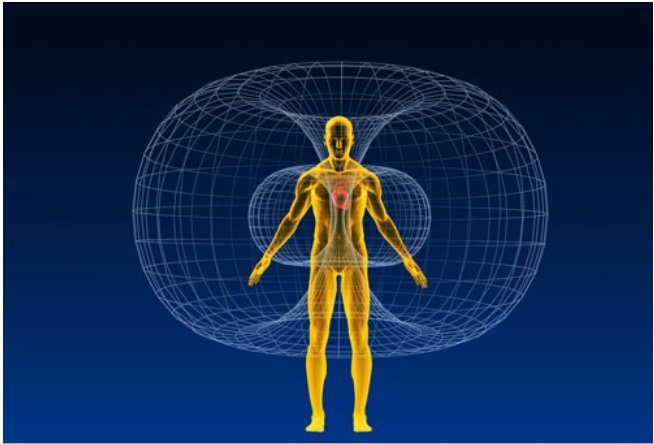 The Earth's Magnetic Field And Consciousness