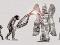 Anunnaki Geneticist Created Our Bodies, NOT Our Souls