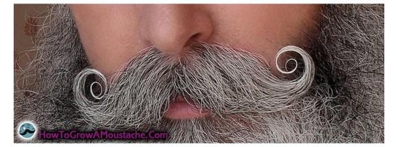 <em>How to grow a Handlebar Moustache</em>