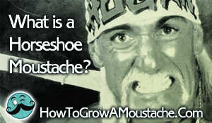 What is a Horseshoe Moustache?