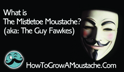 What is The Mistletoe Moustache? (aka: The Guy Fawkes)