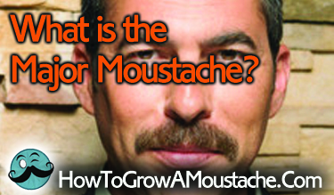 What is the Major Moustache?