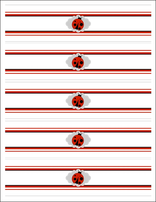 Ladybug Birthday Party with FREE Printables - How to Nest for Less™