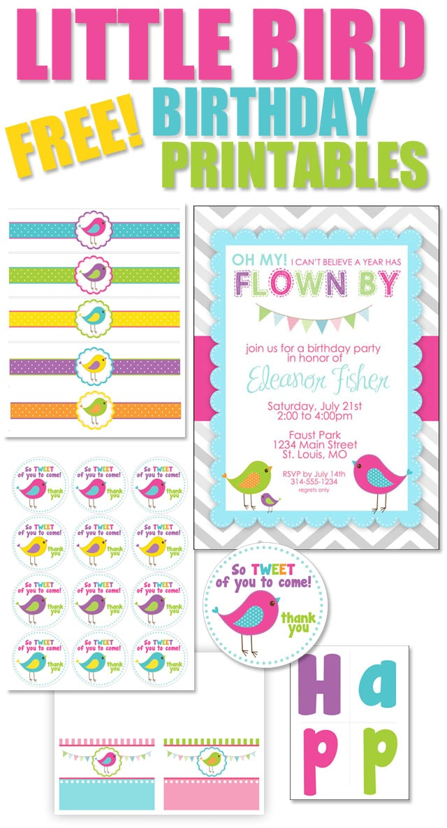 Bird Birthday Party with FREE Printables - How to Nest for Less™