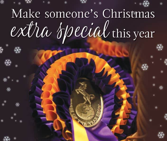Making your Christmas complete with the HOYS Christmas Gift Voucher