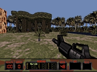 Platoon: Widescreen statusbar and rifle