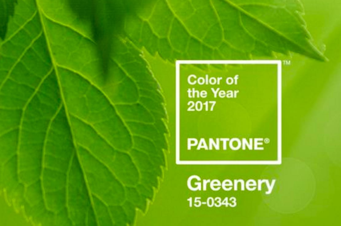 Pantone 2017 And The Pantone Color Of The Year 2017 Is Home Staging Specialists