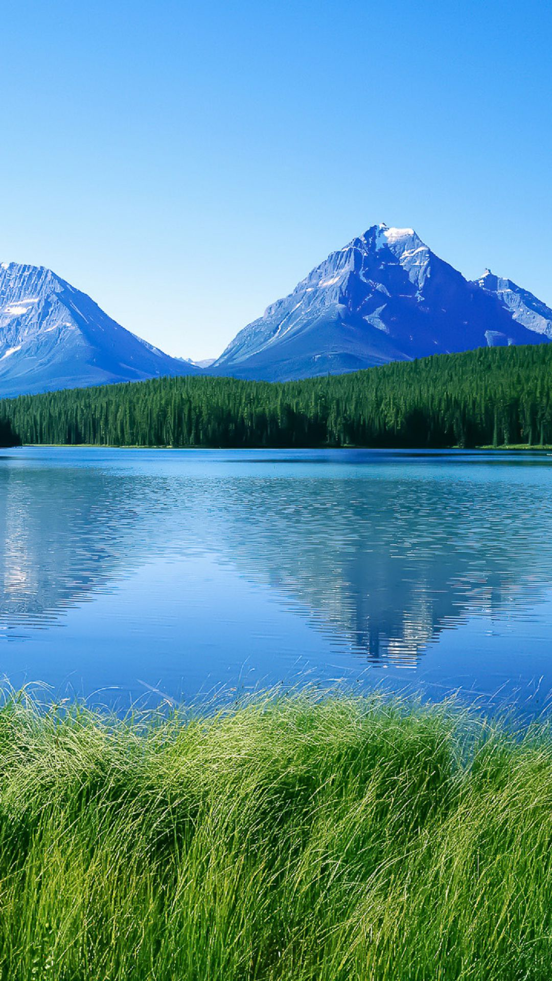 Htc One M8 Wallpaper Hd Blue Lake Mountains Green Grass Best Htc One Wallpapers