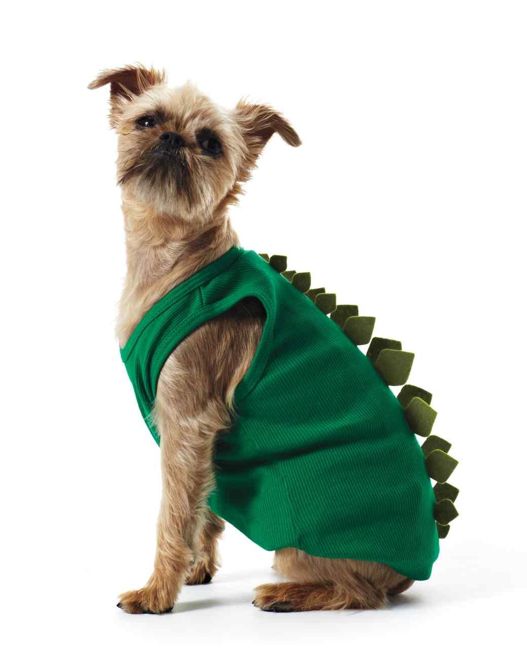 Martha Stewart Shows How To Make A Doggie Dino Costume