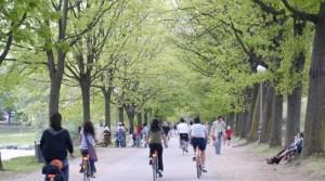 lucca-in-bicicletta