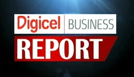 Digicel Business Report