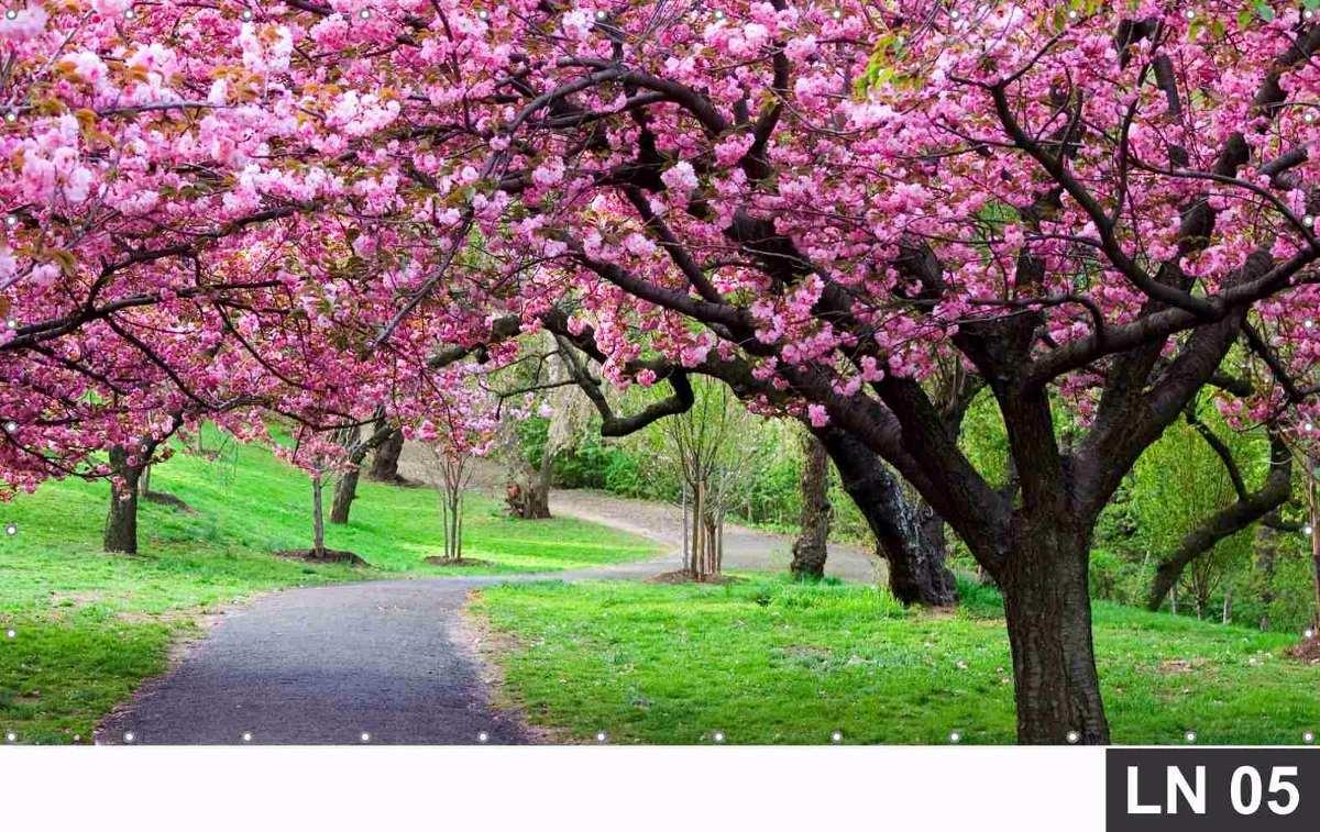 3d Cherry Blossom Wallpaper Cerejeira Japonesa Jardim Rosa Painel 3m 178 Lona Festa