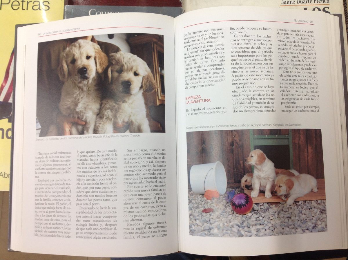 Libro Golden Retriever La Enciclopedia Del Golden Retriever Perros 60 000