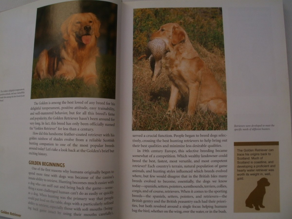 Libro Golden Retriever The Golden Retriever Eve Adamson 99 00 En Mercado Libre