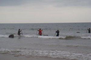 Mariscadores en la costa de Huelva.