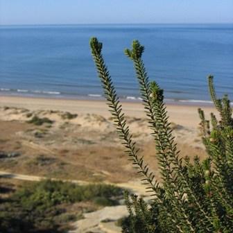 Playa del Parador de Mazagón.