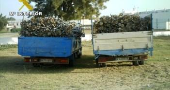 Camiones con el material robado.