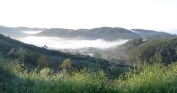 Un aspecto de los alrededores de la aldea de Calabazares (Almonaster la Real).