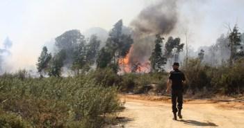 Incendio en Rociana.