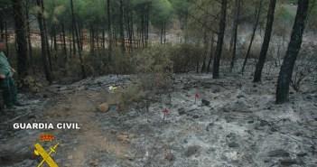 Zona en la que se desencadenó el incendio.