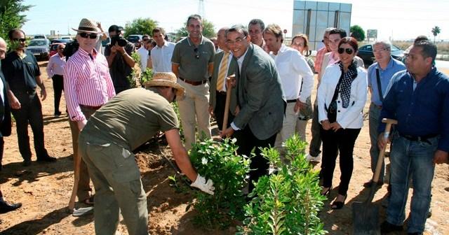 Plantación del primer árbol de la pantalla vegetal.