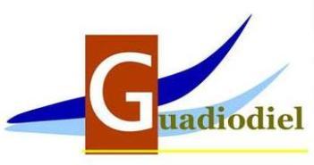 Anagrama de Guadiodiel.