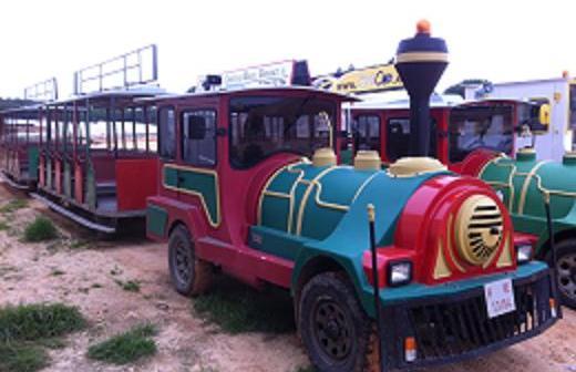 Tren para la Navidad en Trigueros.