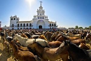 Los animales pasan delante de la ermita del Rocío. (Julián Pérez)