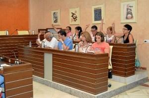 Pleno de julio. Voto en contra del GM PSOE salvo 3 en el punto de Aproindo (2014x1334)
