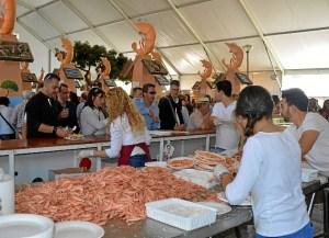 Turismo Gamba Feria 2014