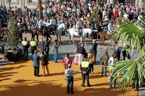 Plan Romero Huelva 2015