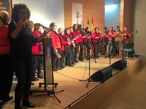 Gala discapacidad Huelva (2)