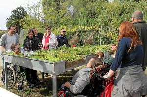 Huertos para personas con discapacidad Parque Moret
