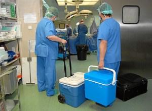 trasplantes Huelva