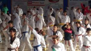 Exhibición del Club Kuroi de taekwondo.