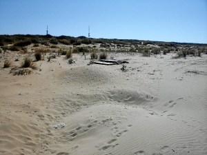 playa bota punta umbria (2)