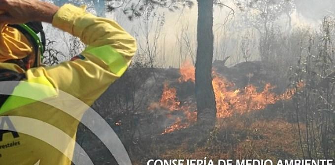 Incendio en Nerva.