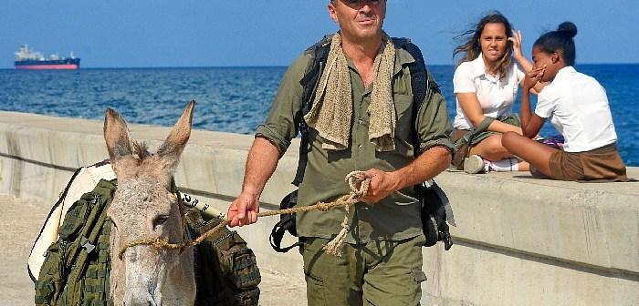 Burro de Huelva en La Habana (2)