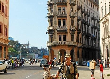 Burro de Huelva en La Habana (6)
