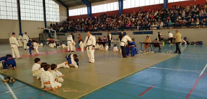 Festival de judo en Almonte.