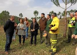 Trabajos contra incendios en el monte Carabales de Valverde