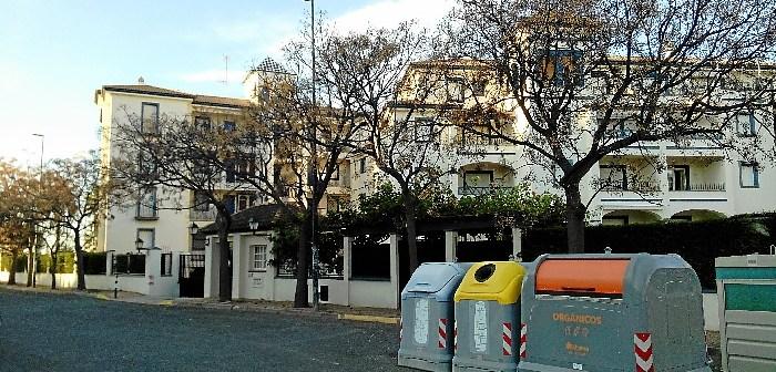 arboles melias calle Robalito isla canela