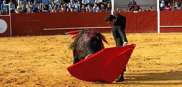 Festival Taurino en Villalba del Alcor (5)